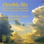 Flexible Sky - Music For Guitar & String Quartet