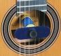 Oasis Guitar Humidifier - Gitarren-Befeuchter (wieder am Lager!)